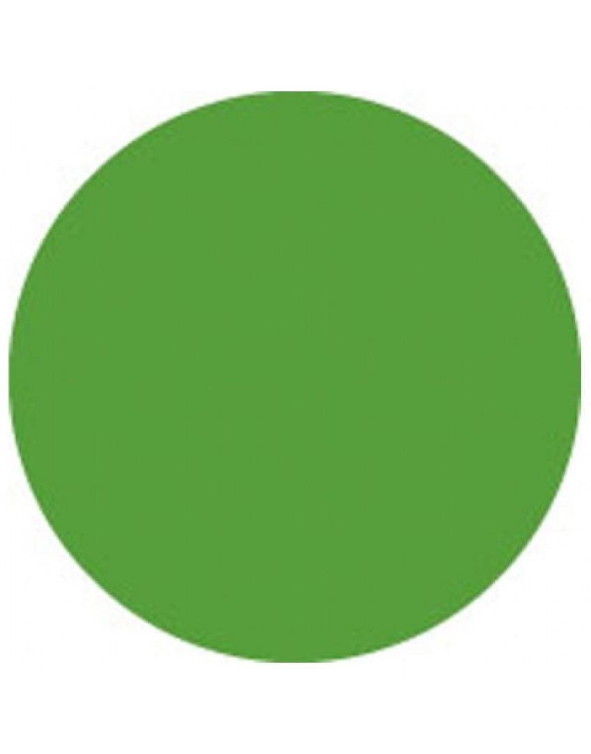 SHOWTEC COLOR SHEET Šviesos filtro lakštas (Žalias)